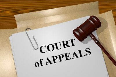 appeal attorneys in Georgia